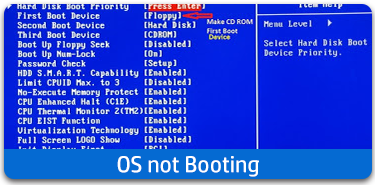 OS not booting